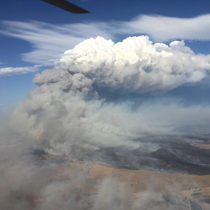 Bushfires, floods and heatwaves are the new standard, leading climate scientists say, but they are growing fatigued trying to convince people.