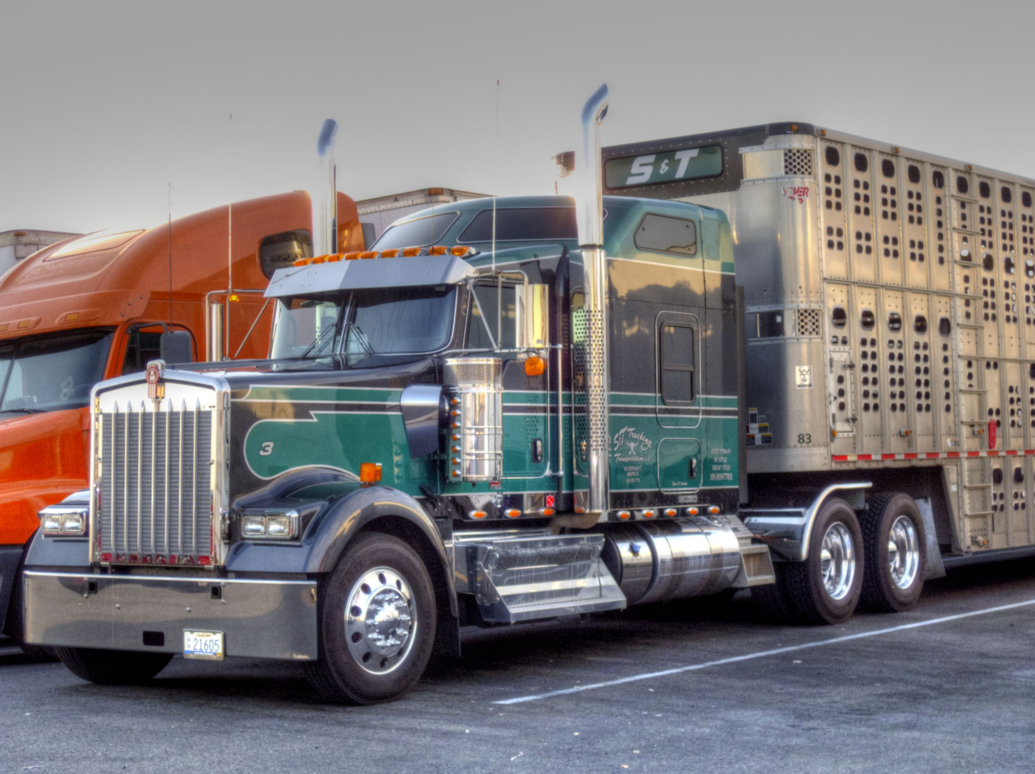 S And T Trucking Livestock Relocation Kenworth Epic Truck - Samsung safety truck shows the road ahead so cars can safely pass