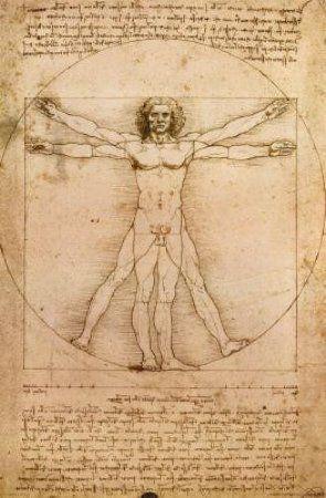 Amazon.com: (24x36) Leonardo da Vinci - Vitruvian Man, Proportions of the Human Figure Art Print Poster: Home & Kitchen