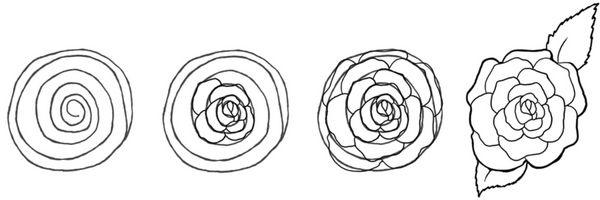 Apprendre Facilement Comment Dessiner Une Jolie Rose Projets D Art Therapie Dessin Rose Dessin Rose Facile