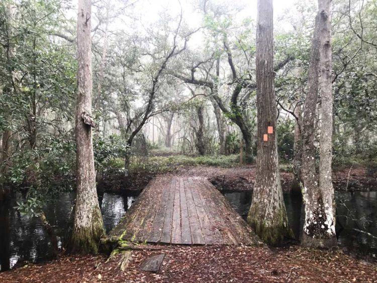 Lake Louisa Hiking & cabins near Orlando Orlando theme