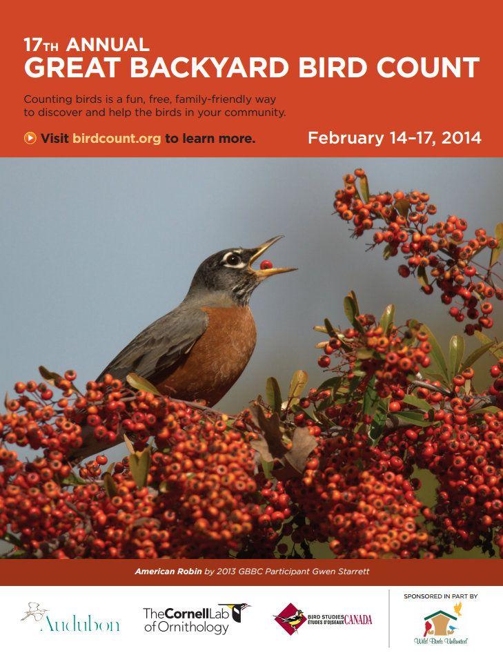 Great Backyard Bird Count has started! Feb 14 to Feb 17 ...