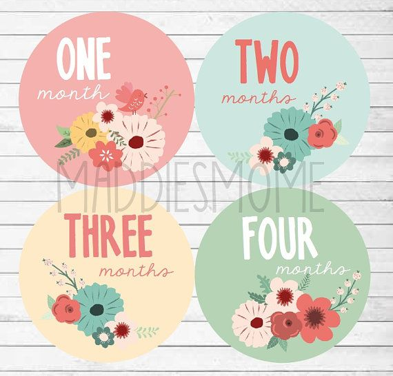 Monthly Baby Stickers Baby Girl Month Stickers by MaddiesMomE