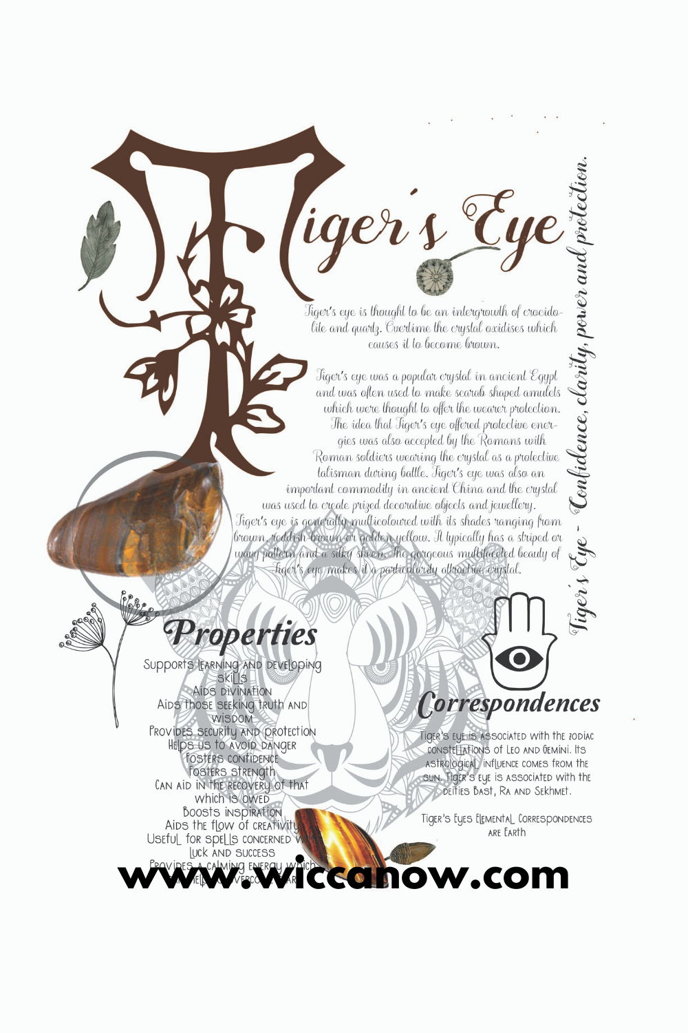 Tiger's Eye Meaning and Benefits in 2020 Crystals, Eye