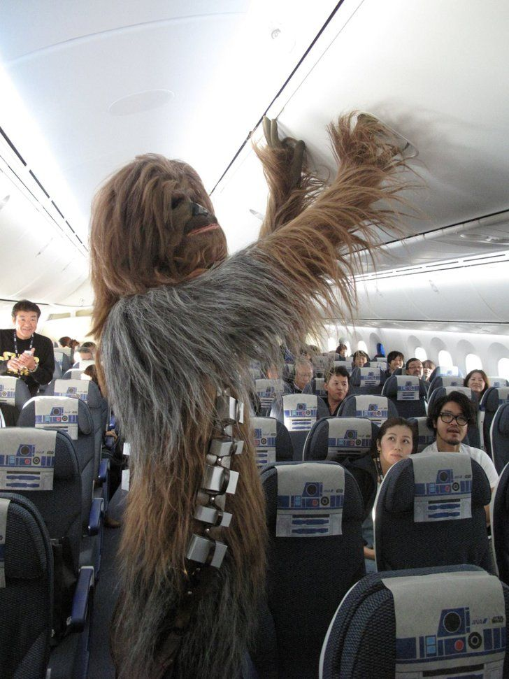 Pin for Later: Why Yes, You Can Fly in Star Wars Planes And Chewbacca was somehow able to fit inside the plane.