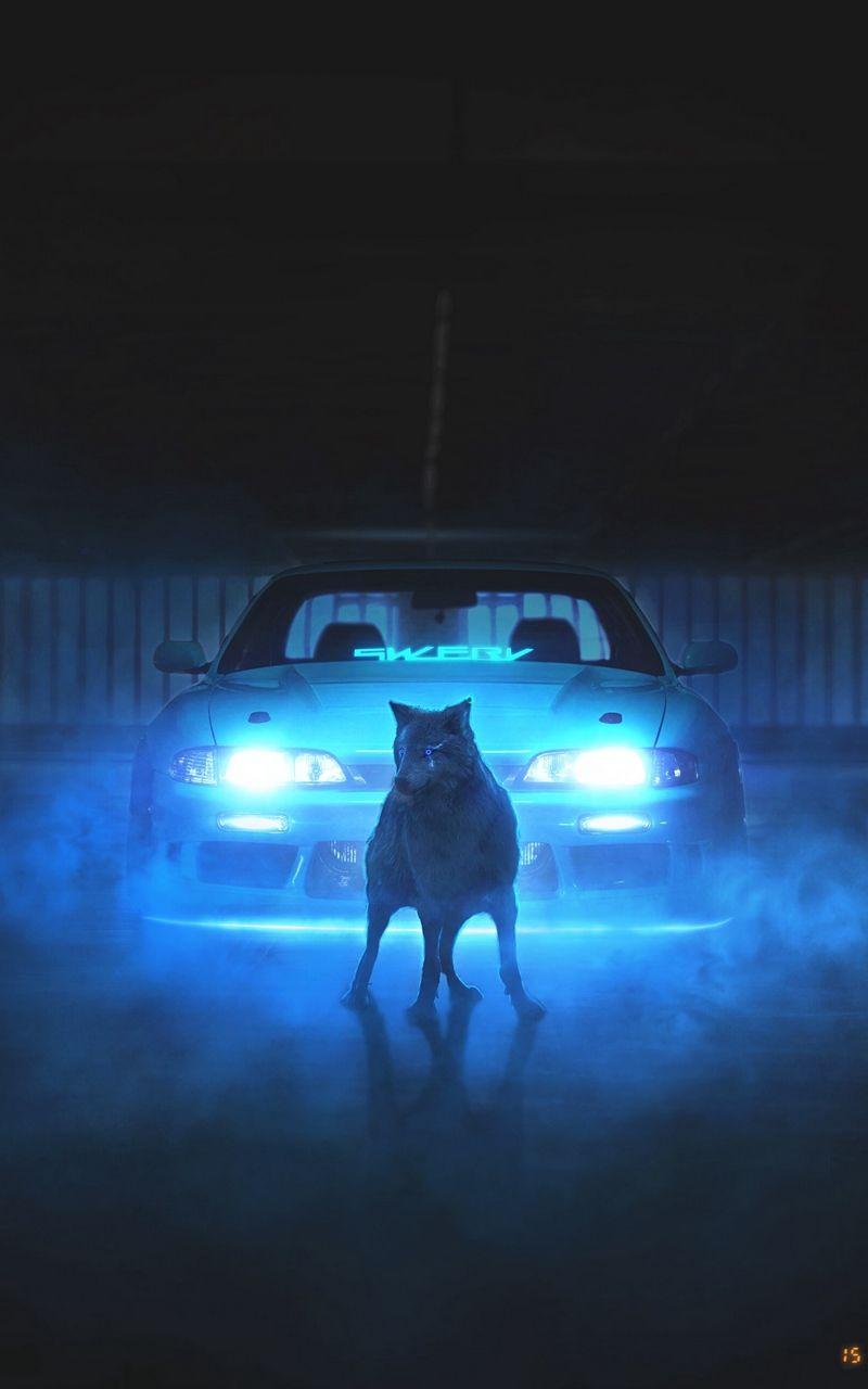 Wallpaper Wolf Light Neon Car Smoke Neon Car Neon Smoke Wallpaper