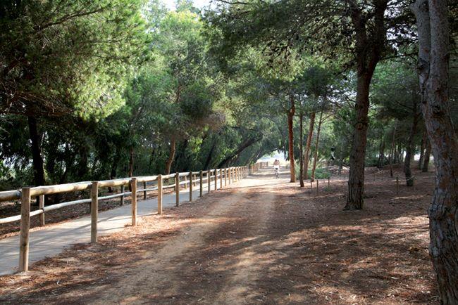 Parque Natural De Las Lagunas De La Mata Y Torrevieja Spain Country Roads Christiana