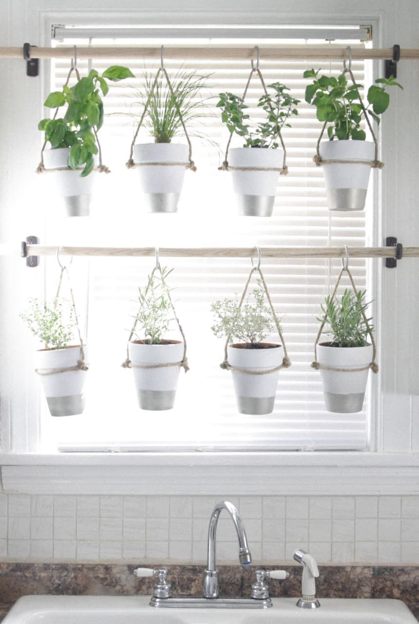 Photo of Indoor Herb Garden – DIY Ideas | Apartment Therapy