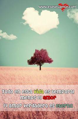 Frase De Amor Con Imagen De Una Nube Con Forma De Corazon Y Un Arbol