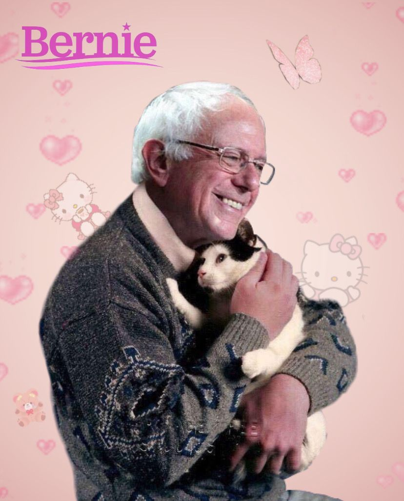Bernie For Prez Picture Collage Wall Art Collage Wall Photo Wall Collage