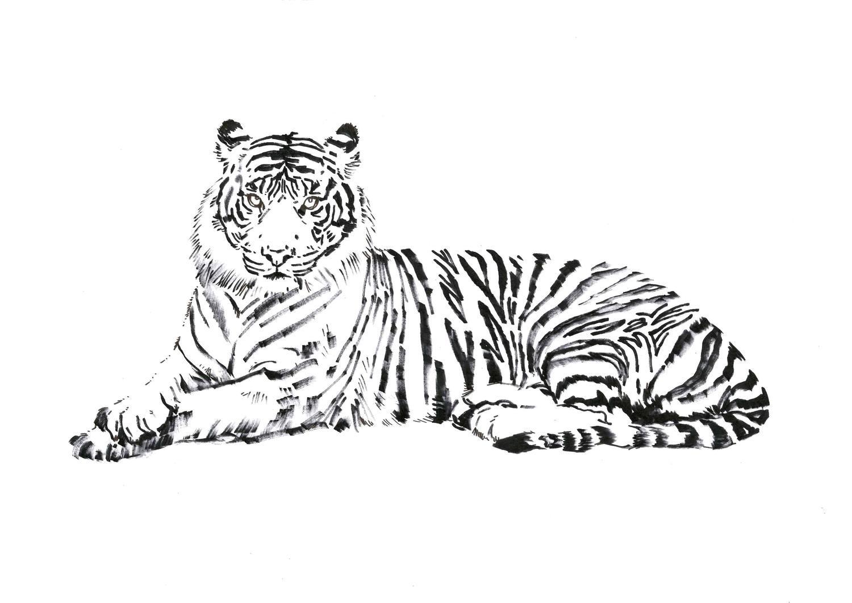 Metin Salih Love Me Save Me Tiger, portion of proceeds