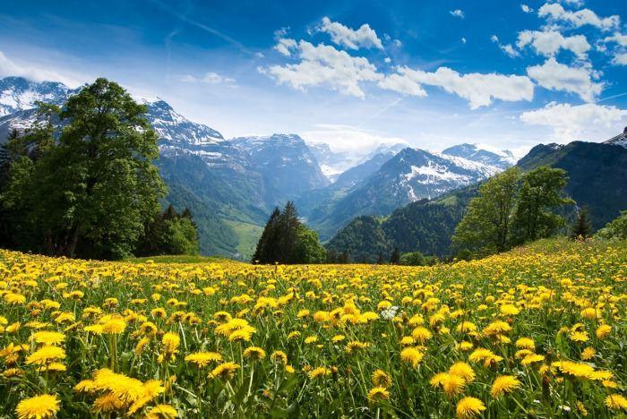 Braunwald, Switzerland.