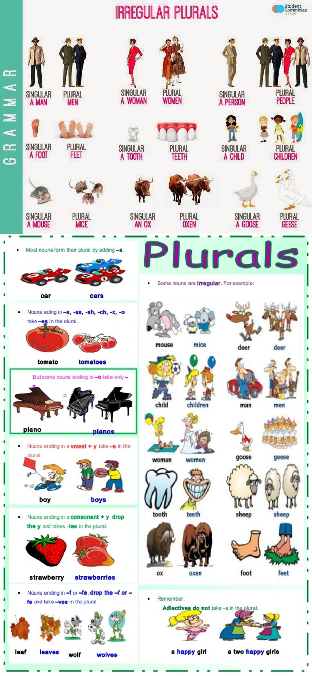 Forum Fluent Landa List Of The Most Common Irregular Plural Nouns In English Fluent Land Aprender Inglés Secundaria