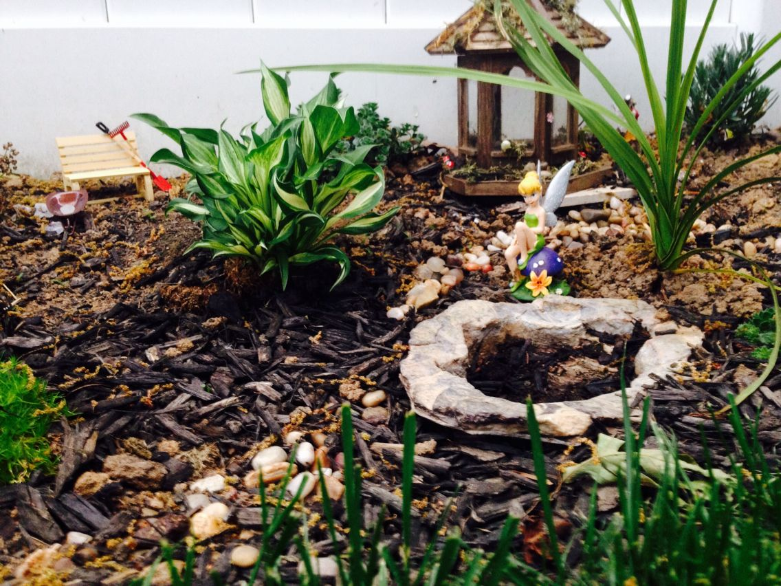 Part of my fairy garden