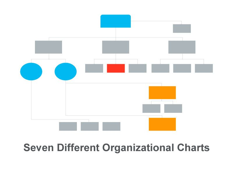 Seven Different Organizational Charts  Keynote Presentation Tools