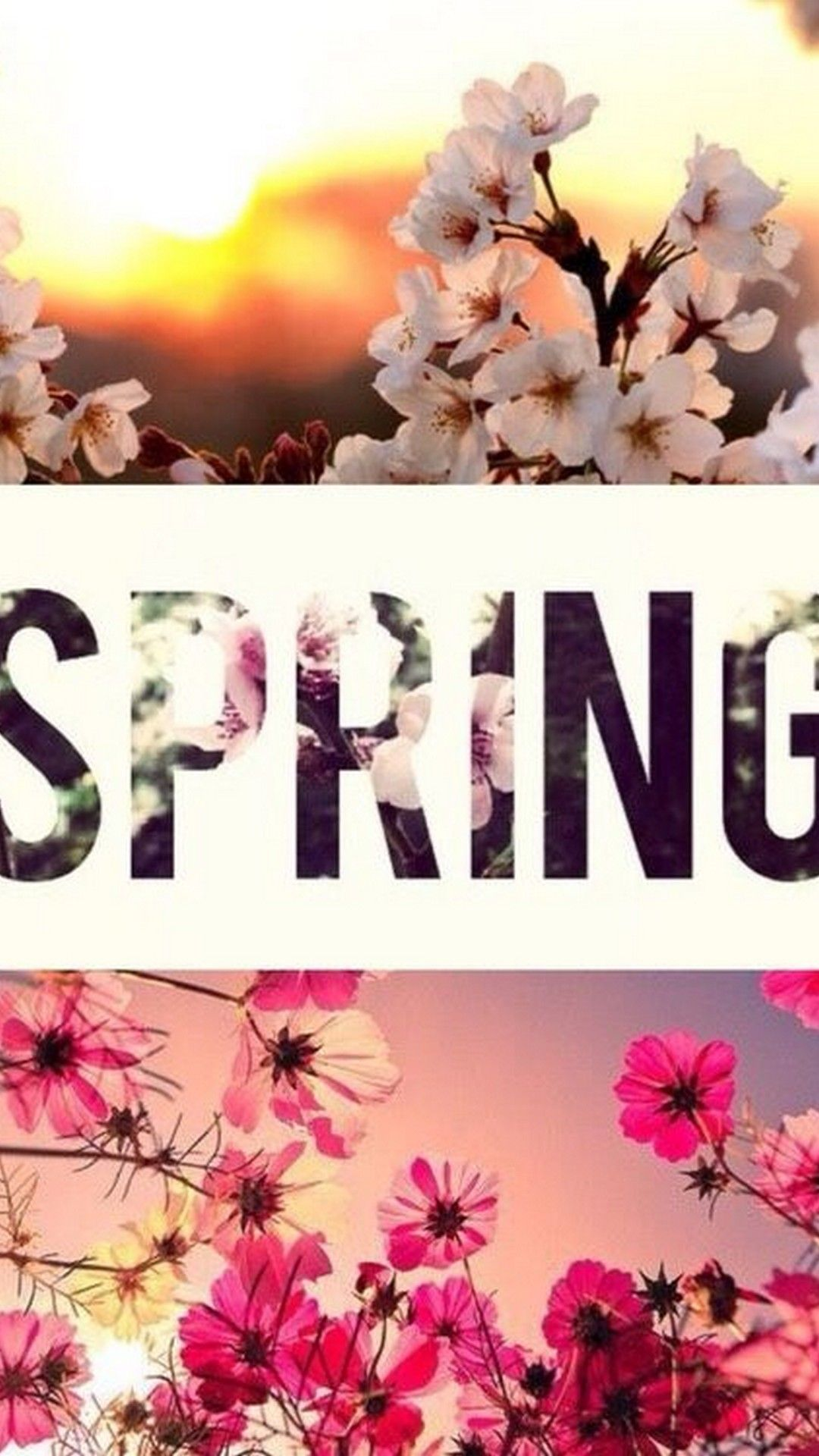 Wallpaper Hello Spring Android Best Android Wallpapers Hello Spring Wallpaper Spring Wallpaper Spring Background
