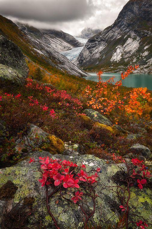 Norway Autumn Landscape Landscape Nature Photography