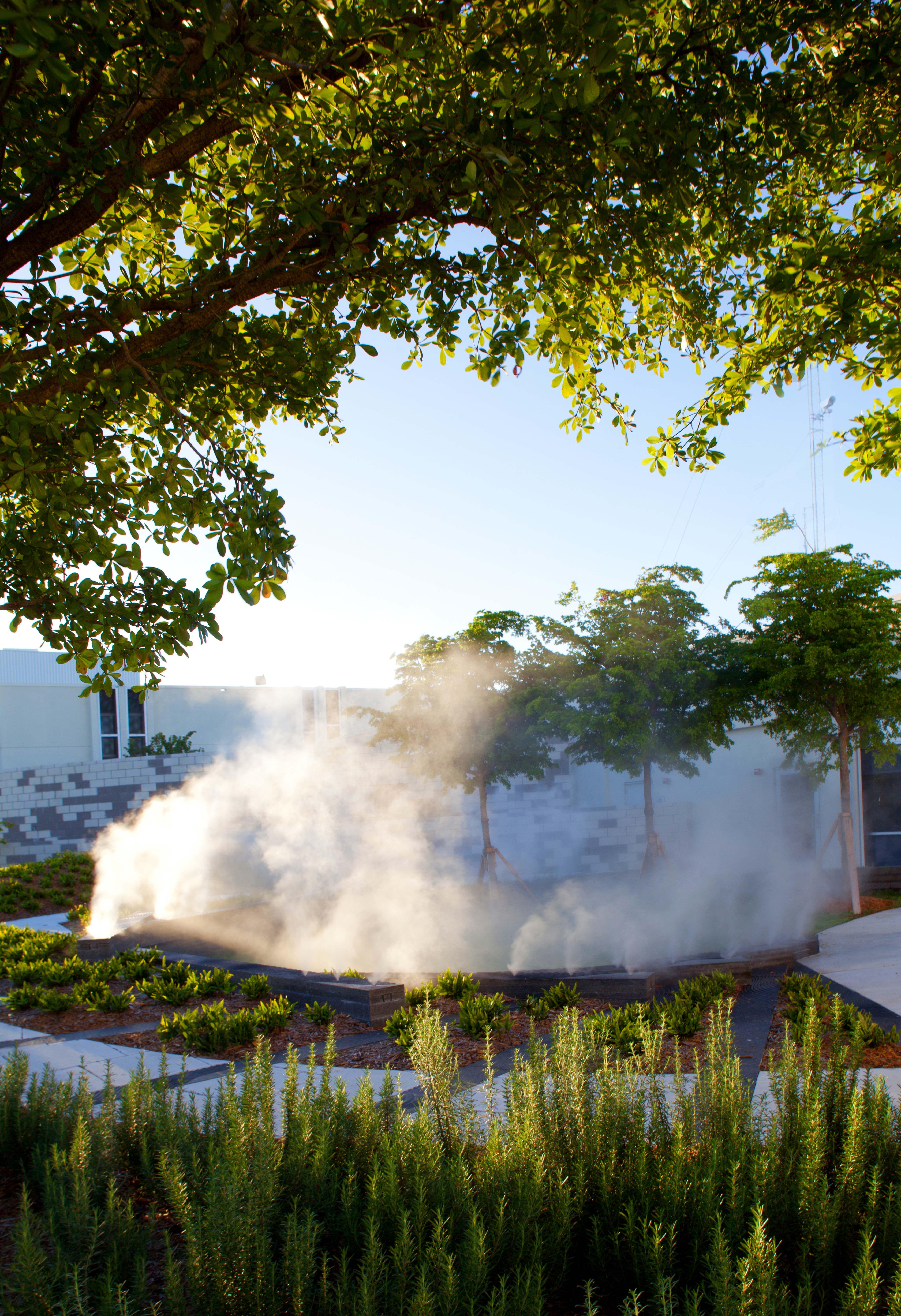 Miami Healing Garden | Fotografi