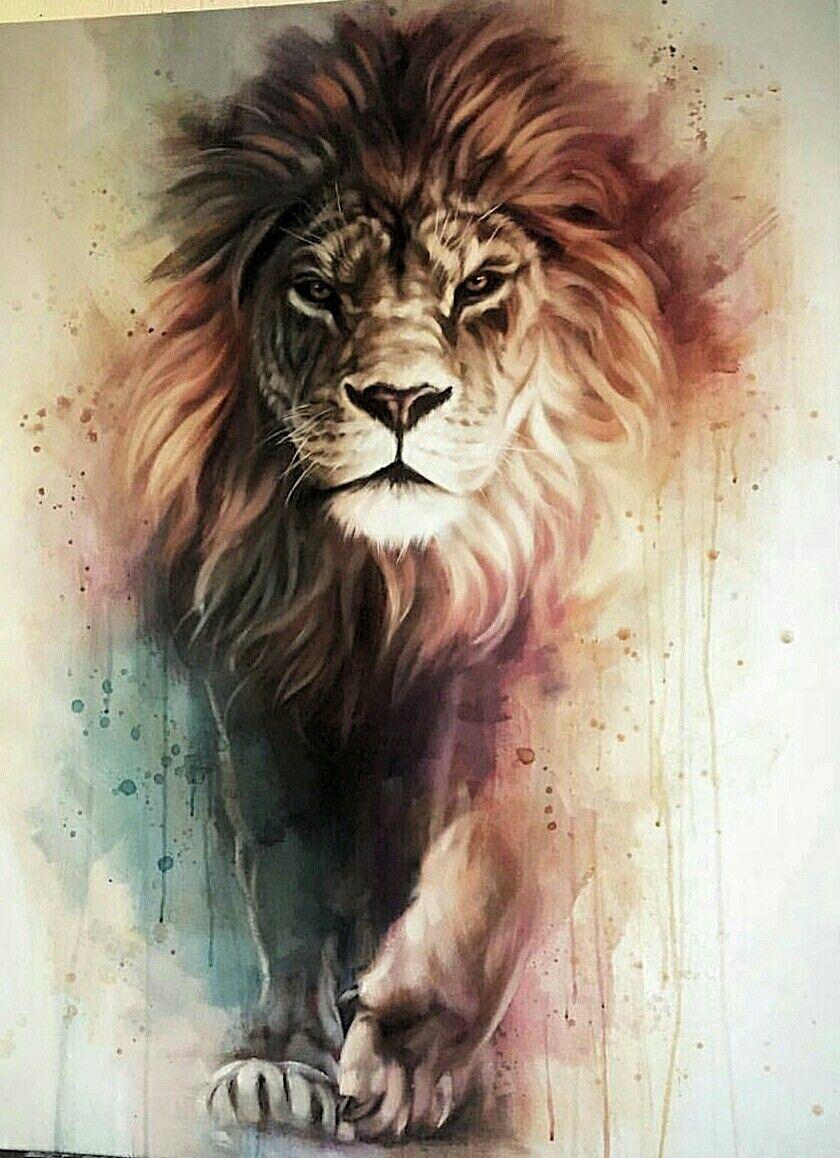 Lion Art Animals Tattoo Painting