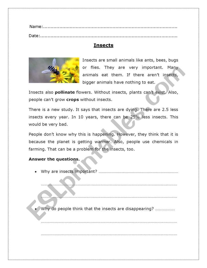 Insects Reading Comprehension Esl Worksheet By Lcaste22 In 2020 Reading Comprehension Reading Comprehension Worksheets Phonics Worksheets [ 1062 x 821 Pixel ]