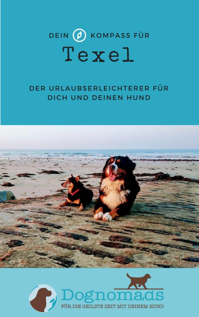 Texel Mit Hund Camping Oder Ferienwohnung Dognomads Hunde Urlaub Mit Hund Hund Reisen