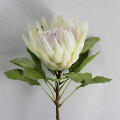 Artificial King Protea Flower 73cm White Protea Flower Australian Native Flowers Fake Flowers
