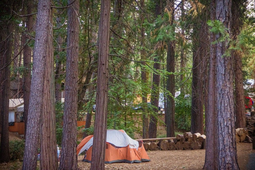 Inntowncamp Posted To Instagram With All This Rain We Ve Had This Winter Is It Time To Start Planning Your Next Camp Out Campground Instagram How To Plan