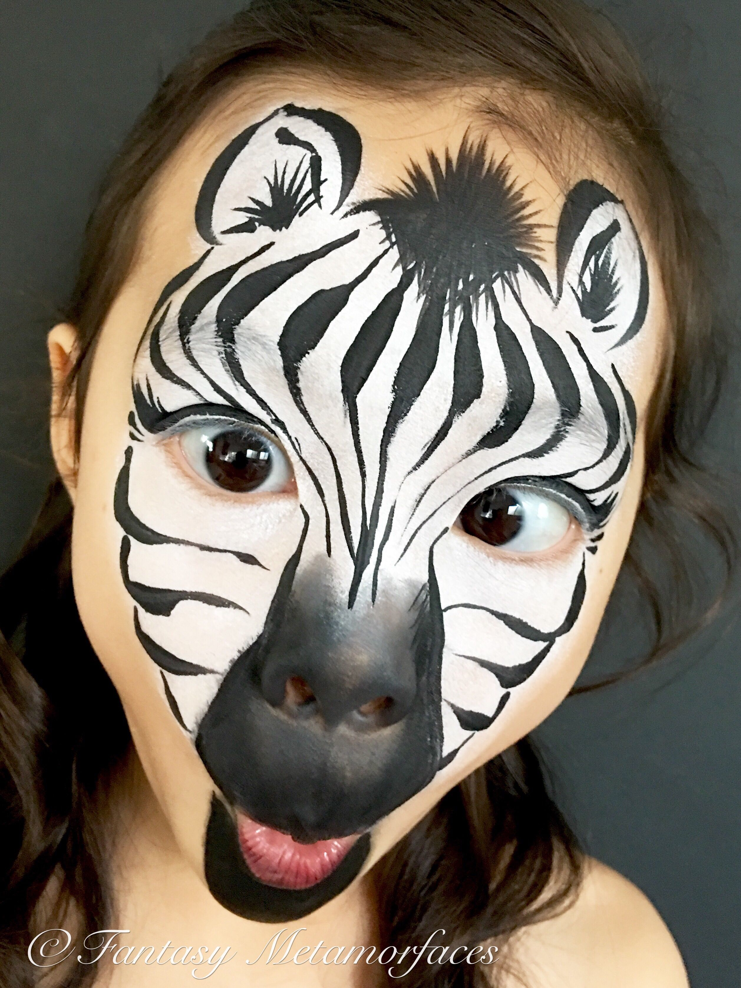 Schminkvorlage Zebra Zebra Face Painting Makeup Face Paint Animal Face Paintings