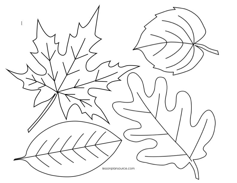 Free Autumn Leaves Coloring Page Fall Leaves Printable Leaf