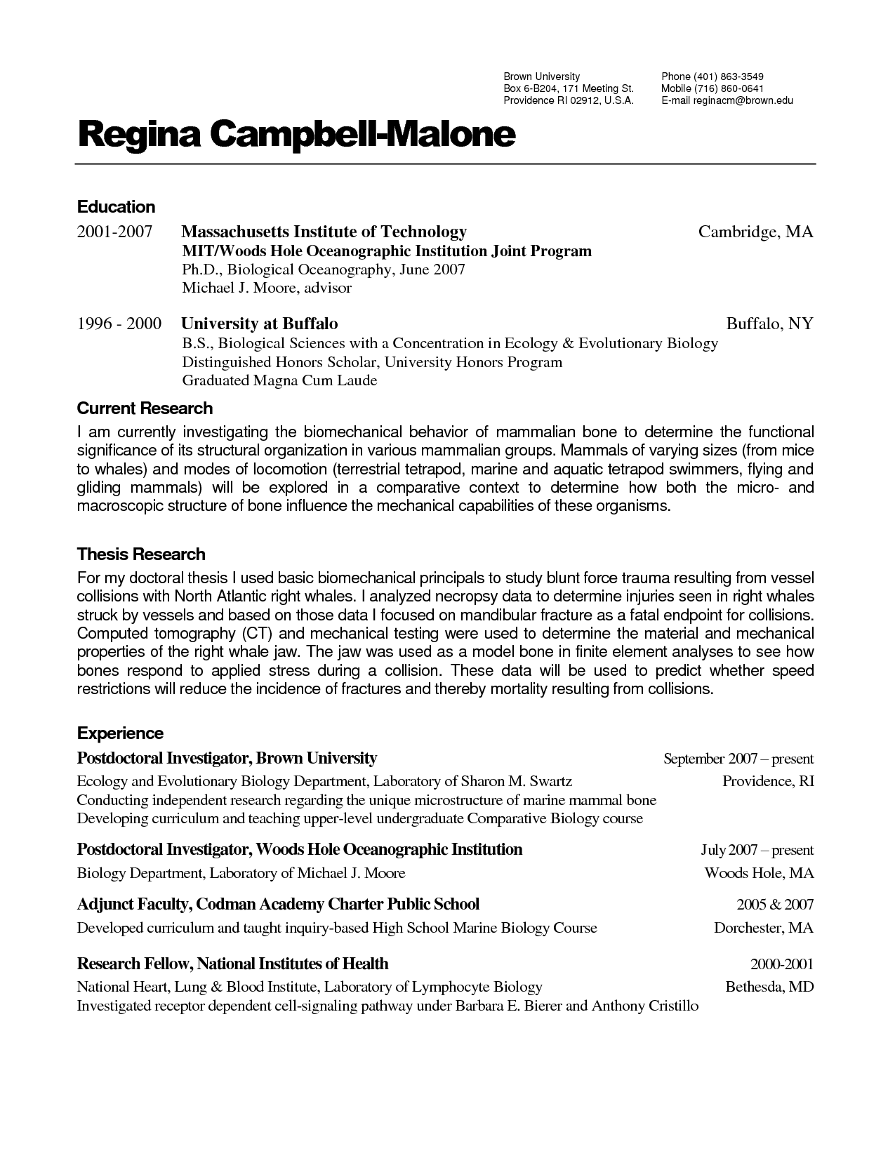 100 100 free resume templates for resume template 1000 images about