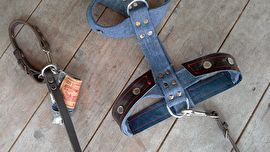 Denim dog harness out of recycled jeans and leather. Beautiful!