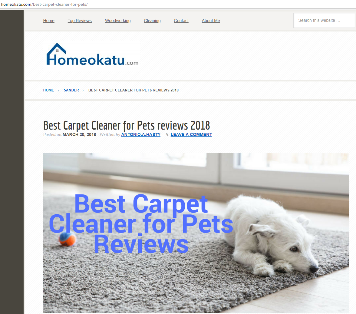 4 Best Handheld Cleaner For Pet Hair Reviews 2018 Carpet Cleaning Pet Stains Clean Car Carpet Pet Urine