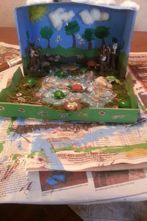 3d shoebox pond diarama | diorama ideas | Diorama kids