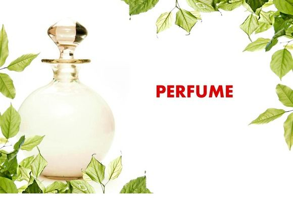 Perfume Powerpoint Template By Yes Presentations On Creative