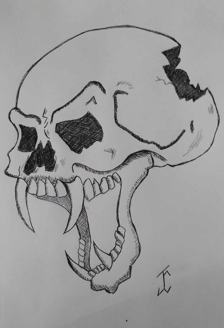 This is an image of Lively Vampire Skull Drawing