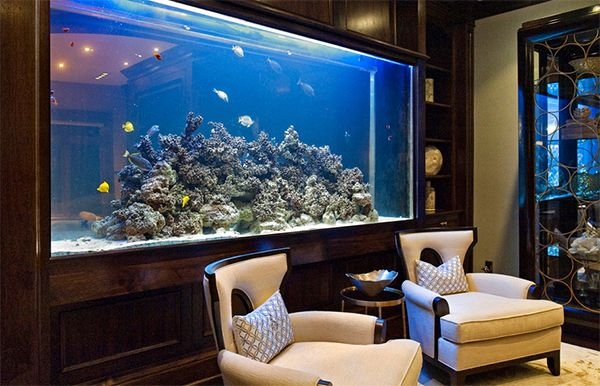 Top 7 aquarium designs for your interior design for Aquarium interior designs pictures