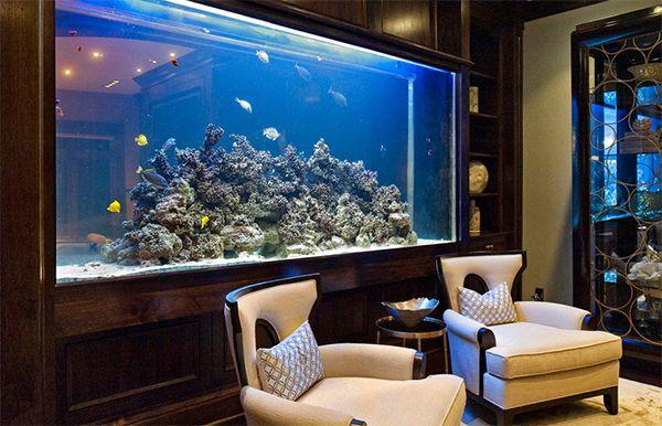 Top 7 Aquarium Designs For Your Interior Design Aquarium Design