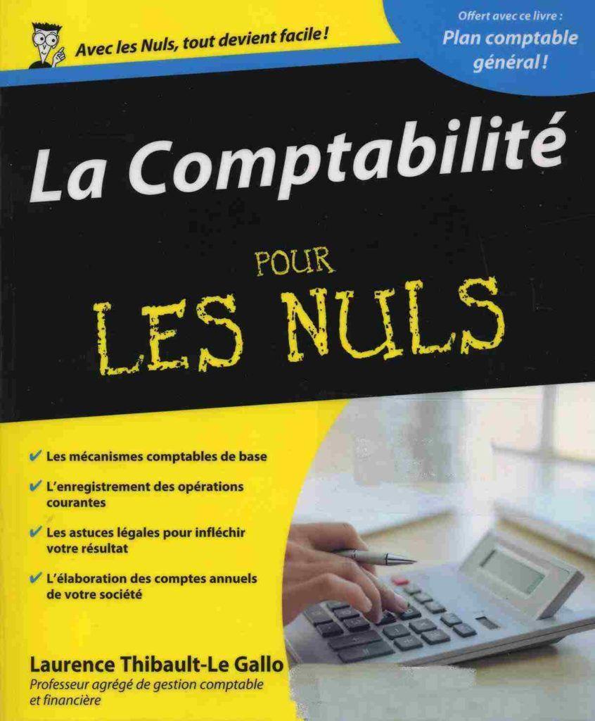 La Comptabilité pour les nuls Ebook pour tous