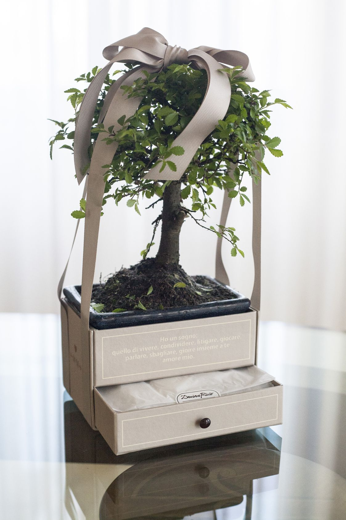 Bomboniere Matrimonio Bonsai.Matrimonio Natural Chic Intervista A Cira Lombardo Top Wedding