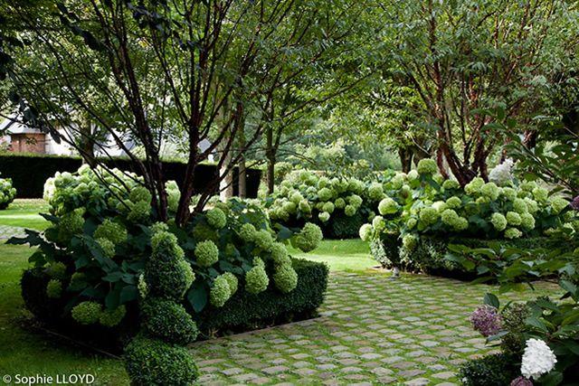 Un jardin en normandie christian fournet paysagiste for Conception jardin anglais