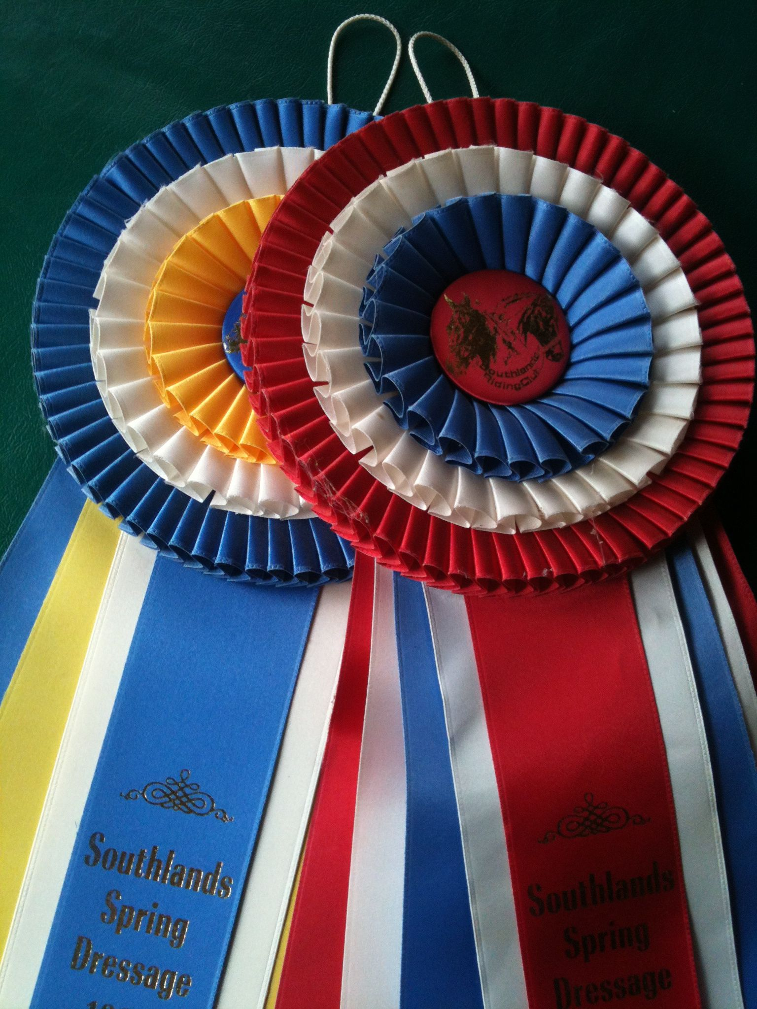 More Creative Ideas in Dressage Shows in BC…