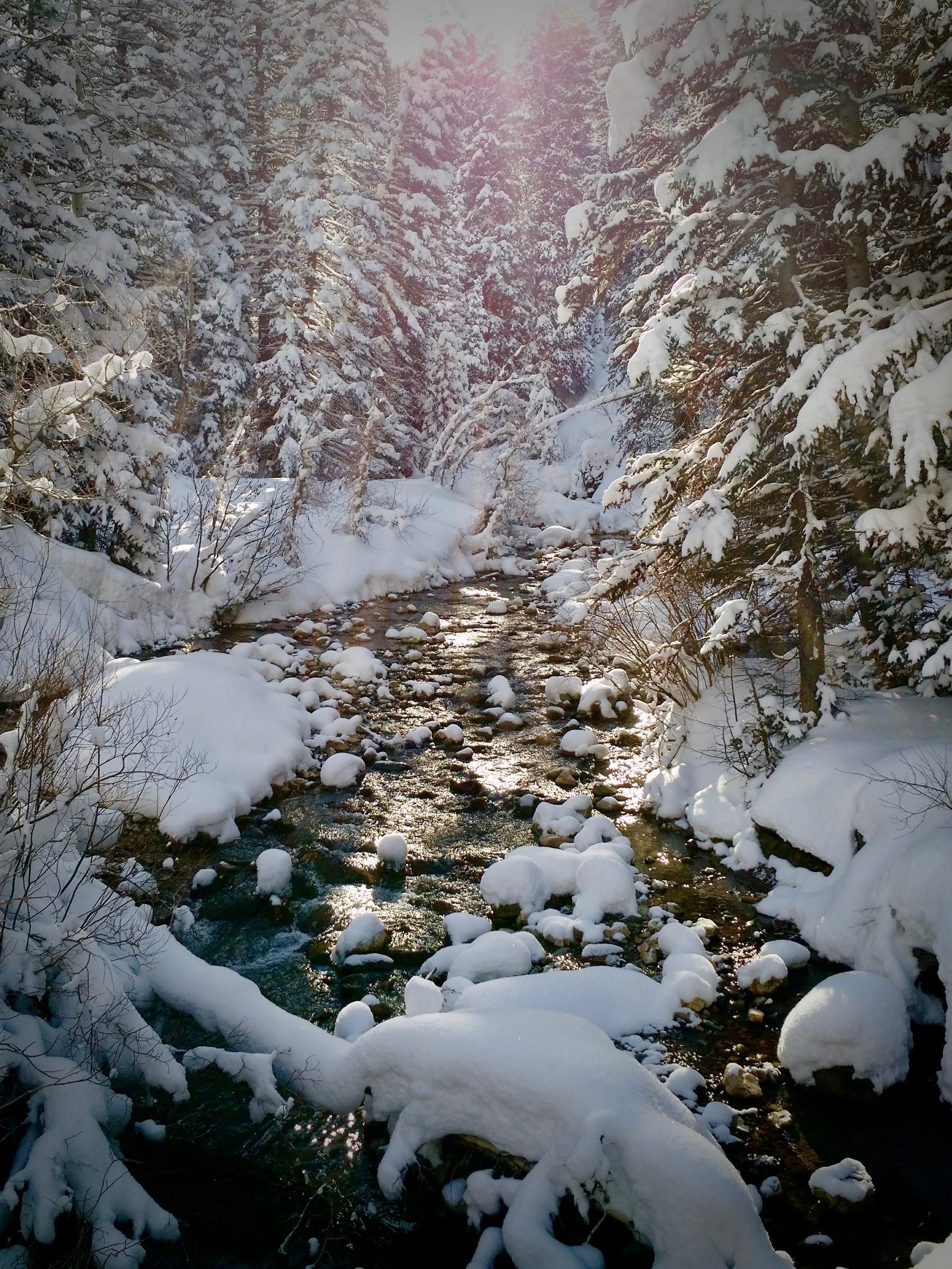 Little Cottonwood Creek At The White Pine Trail Head Above Salt Lake City Off To Another Day Of Skiing Utah Powder 1795 2393 Cottonwood Creek Utah Skiing Cottonwood