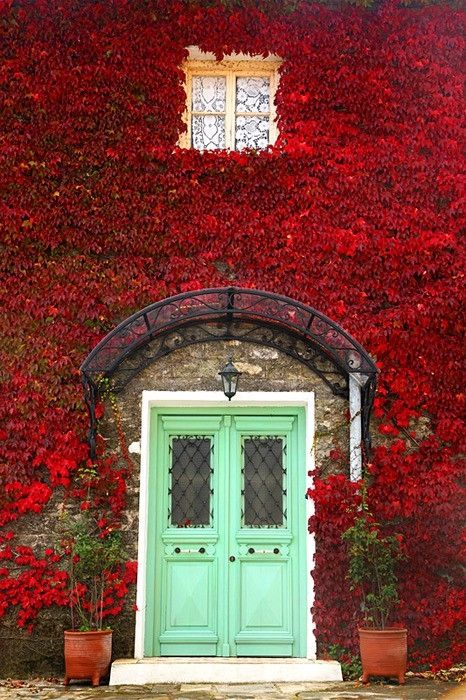 A wall of red leaves surrounds an eye-catching entryway   ..rh