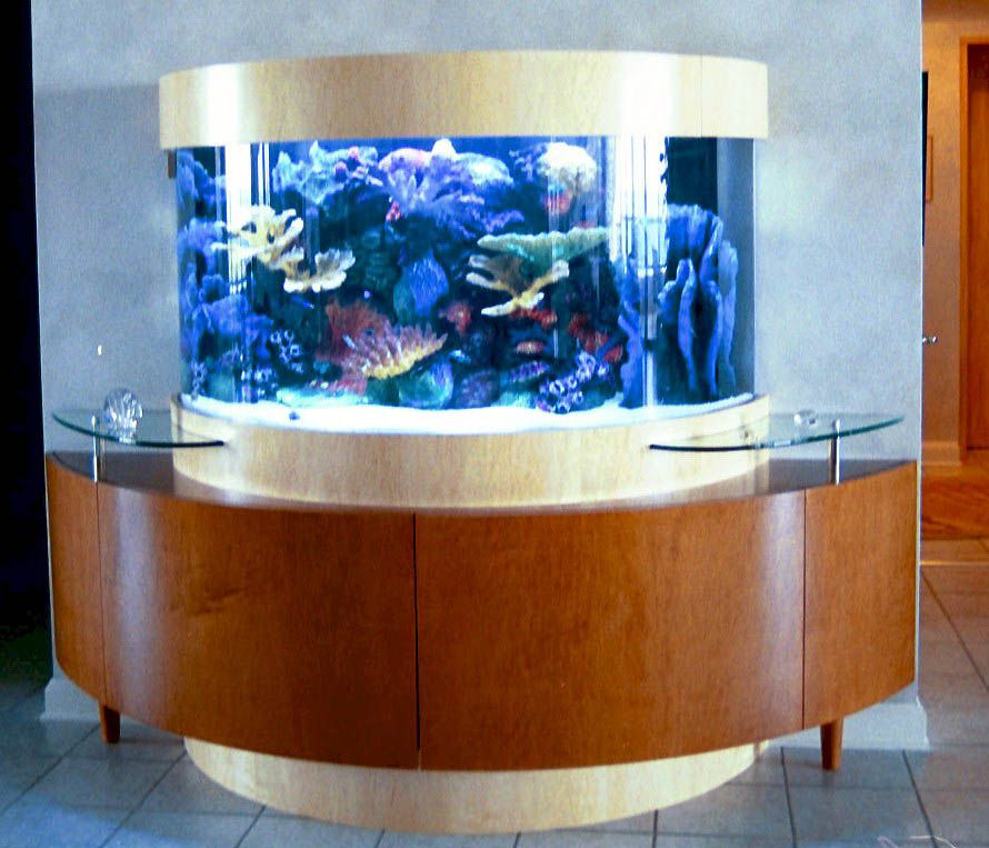 Fishtanks custom aquariums custom made acrylic for How to build an acrylic fish tank