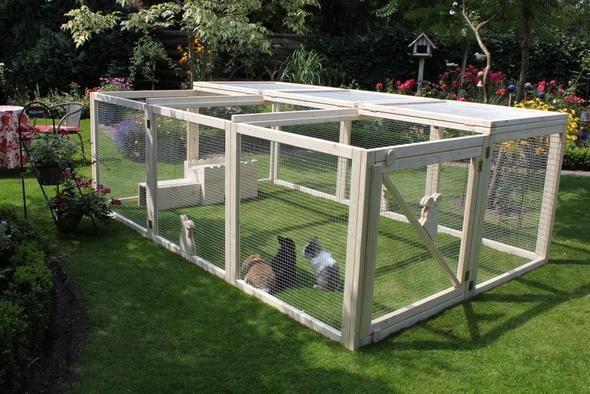 kaninchengehege wohnung google suche kaninchen. Black Bedroom Furniture Sets. Home Design Ideas