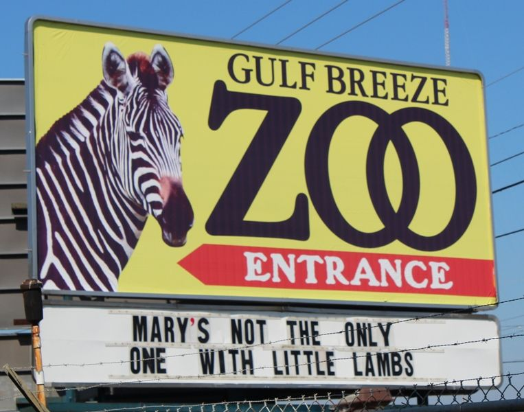 Have Fun With The Family At Gulf Breeze Zoo About 15 Minutes From Navarre