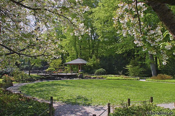 Japanischer Garten Im Botanischen Garten Augsburg Germany Japanese Garden Outdoor Outdoor Structures