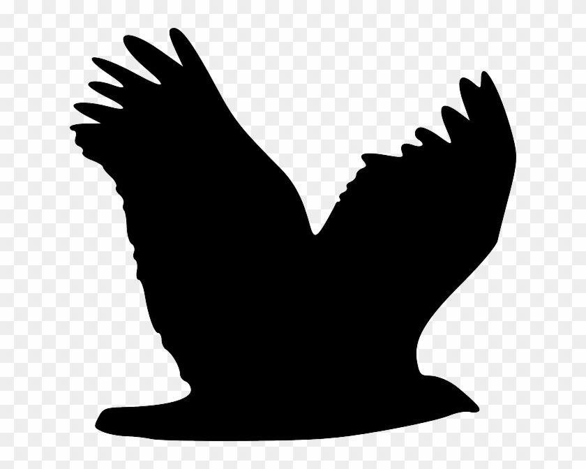 Silhouette Eagle Bird Animal Flying Silhouette Flying Bird Silhouette Png 285129 Bird Silhouette Birds Flying Flying Bird Silhouette