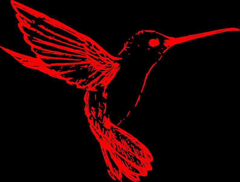 ein kolibri kann bis zu 800 km h fliegen und ist so beweglich dass er f r seinen nektar nicht. Black Bedroom Furniture Sets. Home Design Ideas