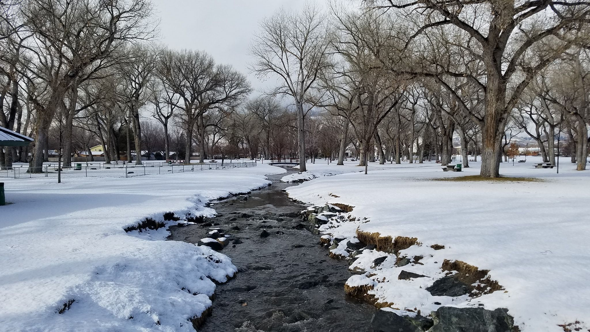 Mills Park February 3rd 2019 Sierra Nevada Carson City Mill Park
